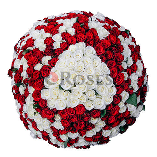 "Bouquet ""Fairy Bali"" 505 roses"